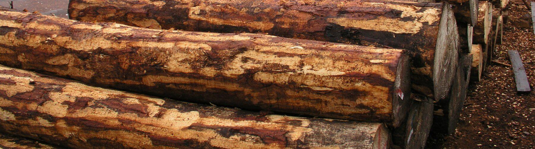 рязане-на-дървета